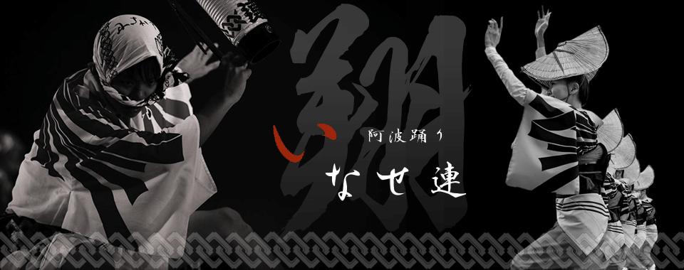 南越谷阿波踊り/草加ふささら祭り いなせ連